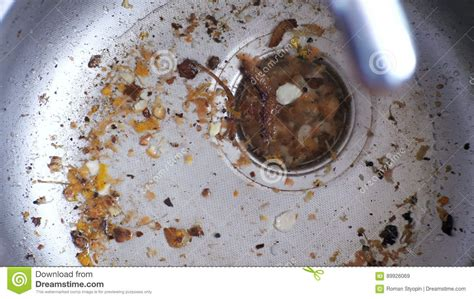 kitchen sink clogged with food kitchen sink clogged with food besto