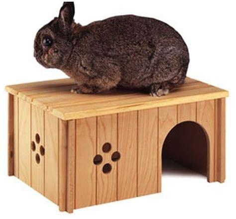 maison pour lapin maison pour mon lapin forum rongeurs wamiz