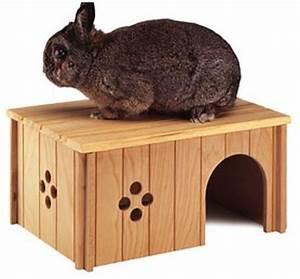 Maison Pour Lapin : maison pour mon lapin forum rongeurs wamiz ~ Premium-room.com Idées de Décoration