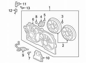Chevrolet Impala Harness Assembly