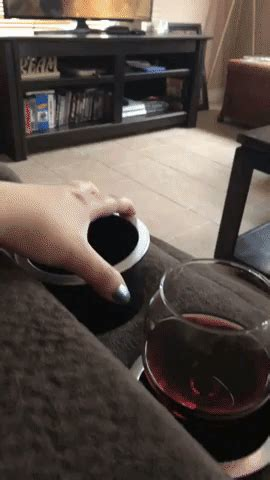 cats wine gif find share  giphy