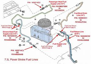 2002 Ford 73 Fuel System Diagram