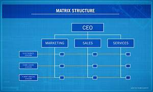 4 Types Of Organizational Structures