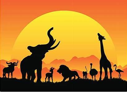 Safari African Vector Sun Africa Animals Clip