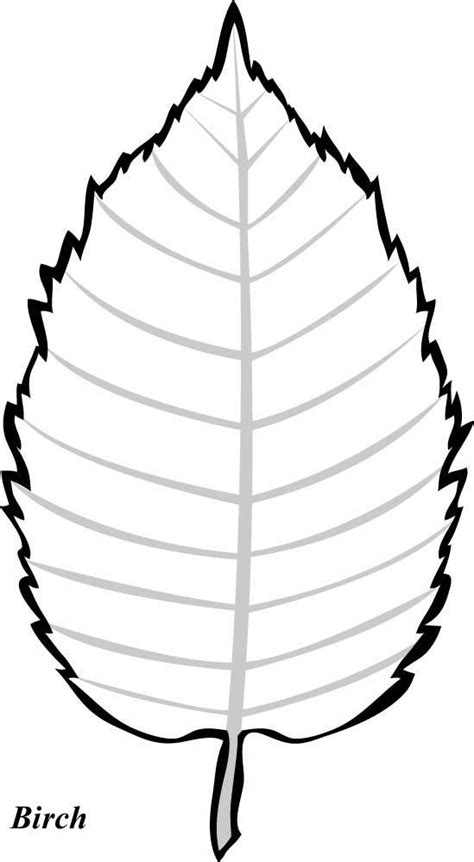 leaf pattern  trace coloring home