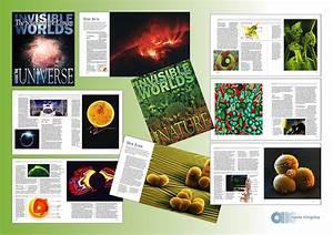 Portfolio—book layout