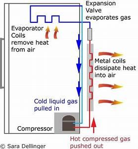 How Does A Refrigerator Compressor Work