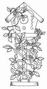 Coloring Birdhouse Pages Bird Printable Flowers Covered Getcolorings Getdrawings sketch template