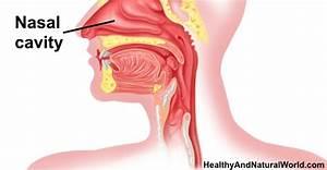 Dry Throat Diagram