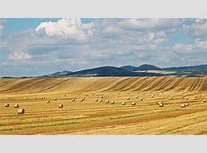 Paisajes rurales, cosecha