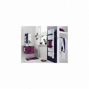 Seche Serviette Atlantic Nefertiti : seche serviette atlantic nefertiti initial 750w etroit ~ Premium-room.com Idées de Décoration