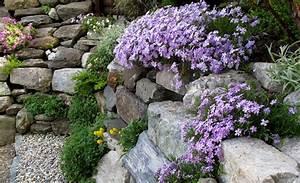 Hang Bepflanzen Bodendecker : steingarten steingarten ~ Lizthompson.info Haus und Dekorationen