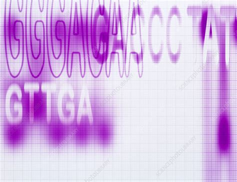 Now take your locked idevice and move to the last activation step and pick the 'activation help' option that is going to boot you through the ritual site. Genetic code - Stock Image - G110/0686 - Science Photo Library