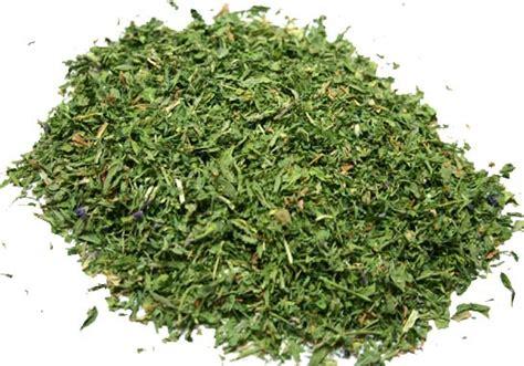 14696 Herbs Of Mexico Coupon by Alfalfa Herb C S 16oz Alfalfa Herb C S S10141 8 27