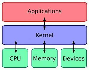 Seed Kernel Diagram
