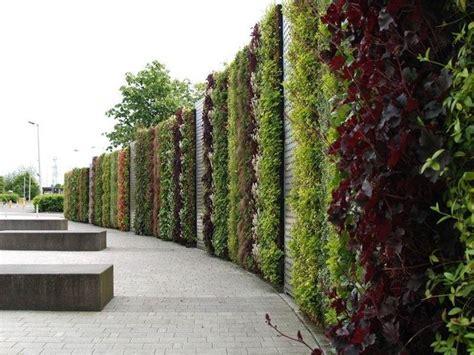 Pareti Verdi  Tipi Di Giardini