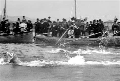 insolite histoire de la natation aux jeux olympiques