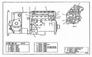 Governor And Fuel Injection Pump Group