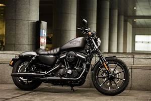 Harley Davidson Iron : harley davidson bike rental goa booking open check pricing ~ Medecine-chirurgie-esthetiques.com Avis de Voitures
