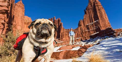 best hiking near me top friendly hikes near me sabis bulldog athletics