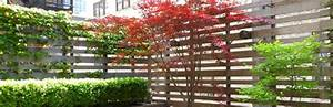 Cacher Vis A Vis : se prot ger du vis vis comment faire my little jardin my little jardin ~ Melissatoandfro.com Idées de Décoration