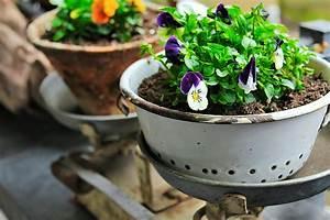 Was Sind Frühlingsblumen : fr hlingsblumen auf dem stadt balkon das sind die besten pflanzen ~ Whattoseeinmadrid.com Haus und Dekorationen