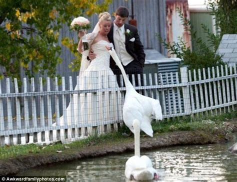 Are these the worst wedding pictures ever? Awkward Family ...
