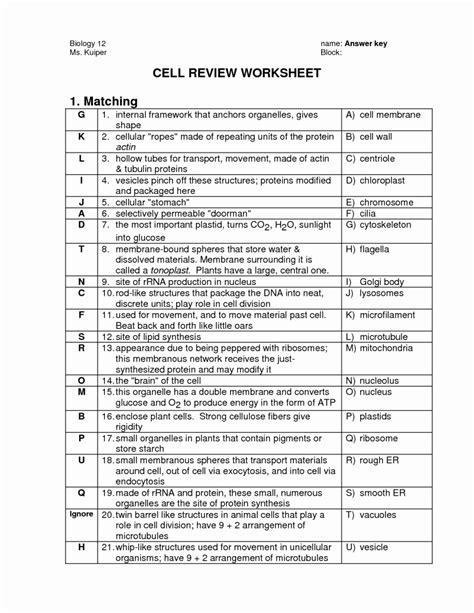 cell organelles worksheet answer key worksheet resume