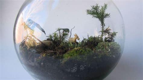 Cara Membuat Taman Di Rumah Minimalis