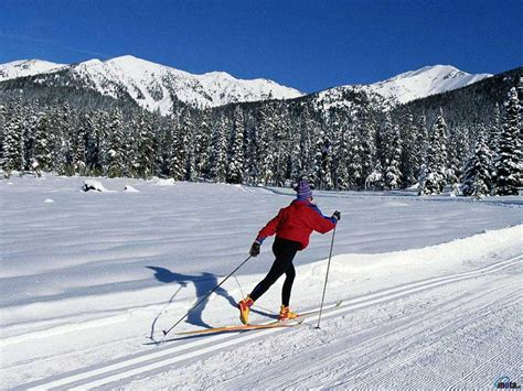 Download Wallpaper Cross-Country Skiing (1024 x 768 ...