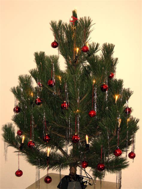 Kiefer Als Weihnachtsbaum datei weihnachtsbaum kiefer jpg