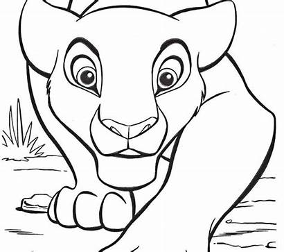 Coloring Draw Easy Pages Animal Fun Simple