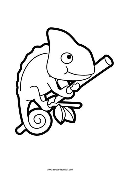 Dibujos de camaleones para colorear e imprimirDibujos de