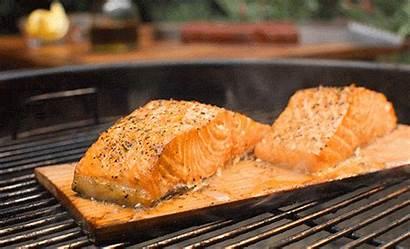 Salmon Cook Stuff Eat Coming