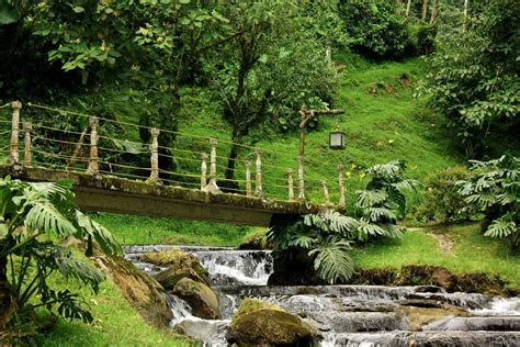 They constantly call you and ask what your up to. Hot Springs Santa Rosa de Cabal   Travelombia