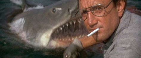 Jaws Bigger Boat Image by Jaws Review Summary 1975 Roger Ebert