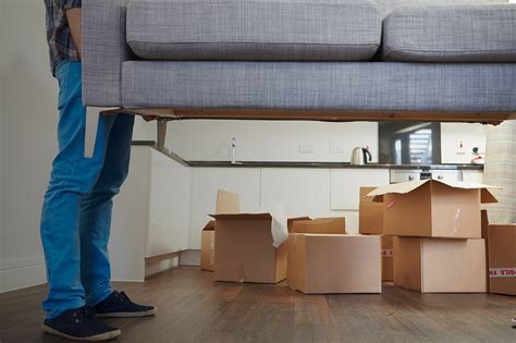 auckland budget movers relocation services company