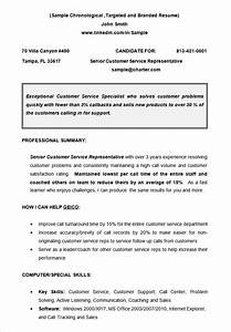 12 free chronological resume templates pdf word examples With chronological resume template word