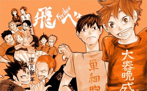On wikipedia the title of the manga is written with only one u (haikyu) while on the web everyone writes it with two. Best Haikyuu Wallpaper Aesthetic Pics