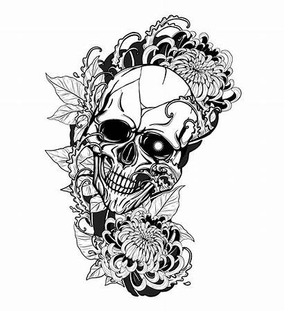 Skull Tattoo Drawing Chrysanthemum Hand Vector Oni