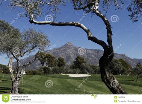 andalucia golf open course marbella cursus bij fairway holidays installatie aanplanting