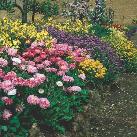 bloomers home garden center
