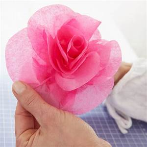 Papierblumen Basteln Anleitung : rosen aus seidenpapier basteln basteln ~ Orissabook.com Haus und Dekorationen
