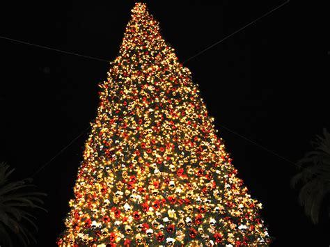 christmas tree wallpaper 2014 hd i hd images