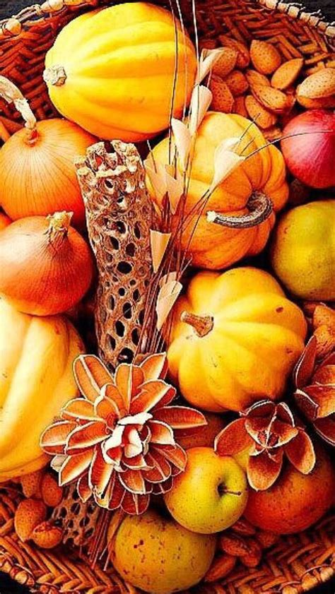 Fall Wallpaper Iphone Pumpkins by Iphone Wallpaper Thanksgiving Tjn Iphone Walls