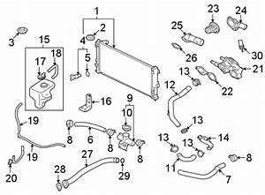 Mitsubishi Lancer Engine Coolant Reservoir Hose