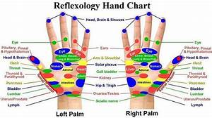 Reflexology Foot Chart Back Embracing Life From Foot To Palm Hand Reflexology 从脚至手掌