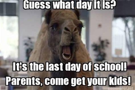 Last Day Of Summer Meme - last day of school meme google search teacher comics pinterest meme school and teacher