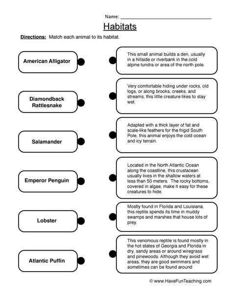 habitat worksheets grade 6 habitats worksheets teaching