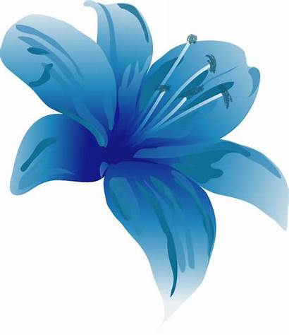 Lily Clipart Clip Lilly Single Cliparts Flower